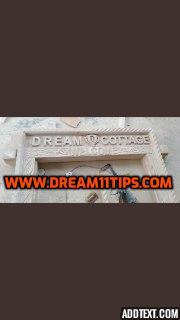 dream11 paid teams